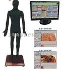 MAW-170A多媒体安摩点穴电子人体模型(针灸推拿)