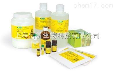 二肉豆蔻酰磷脂酰胆碱(DMPC), 99%