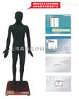 多媒体人体点穴仪考试系统(安摩推拿
