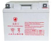 金武士PW100-12免维护蓄电池12V100AH价格