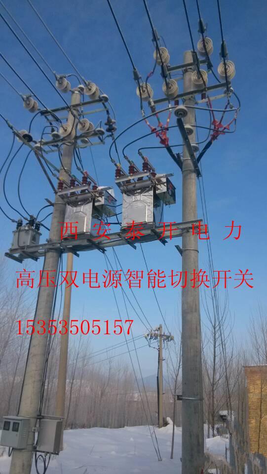10kv双电源自动互投装置 高压双电源切换开关