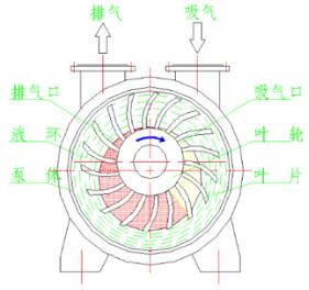 水循环环真空泵运行图
