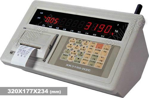 XK3190—H2Bb