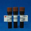SigmaC6762 Cytochalasin B  细胞松弛素B 北京索莱宝C8080