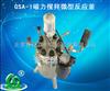 北京生产GSA-1磁力搅拌微型反应釜