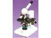 生物显微镜|显微镜价格