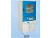 DZF-6210真空型干燥箱