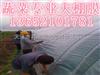 农用地膜颜色-棉花地膜。天津地膜供应商