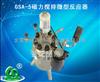 南京批发GSA-5磁力搅拌微型反应器