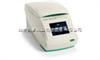 美国BIO-RAD T100 PCR仪