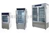 ZFX-1200L上海厂家智能种子发芽箱1200L价格