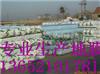 天津供应2米宽地膜; 天津工程地膜;2米地膜价格