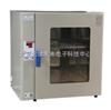 HG19-GR-70热空气消毒箱 干烤灭菌器 微电脑热空气消毒箱