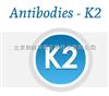 K2-0801抗dsRNA单克隆抗体—K2抗体